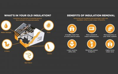 The Importance of Maintaining Insulation
